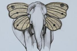 Emily Davalle elephant 2
